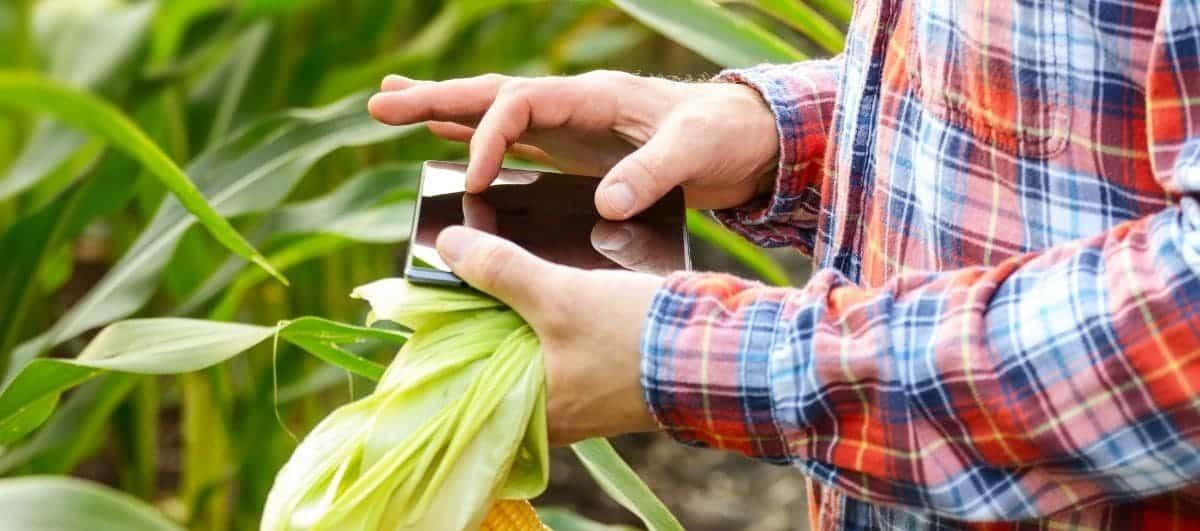 Precisión centimétrica en la agricultura